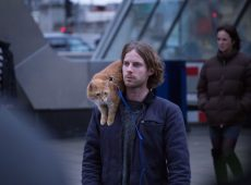 Luke Treadaway (James), Bob. Director and Co-producer Roger Spottiswoode. Producer Adam Rolston of Shooting Script Films. Screenplay adapted by Tim John and Maria Nation; based on the International Best Selling book A Street Cat Named Bob.